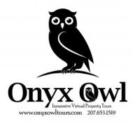 Onyx Owl
